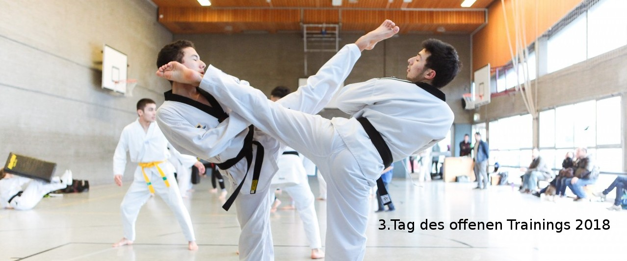 Cover-Image-Tag-des-offenen-Trainings-201_20180105-181917_1